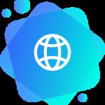 icon_domain_info